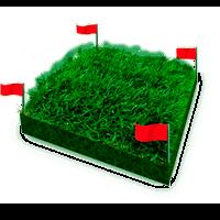 Вынос границ (поворотных точек) земельного участка на местность (в натуру)